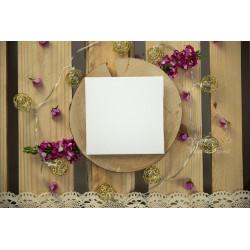 Folder na płytę - BIAŁY  - 4